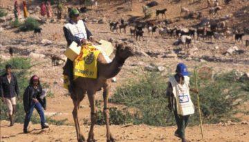 vaccinators_camels3